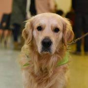 Chester from our intermediate class